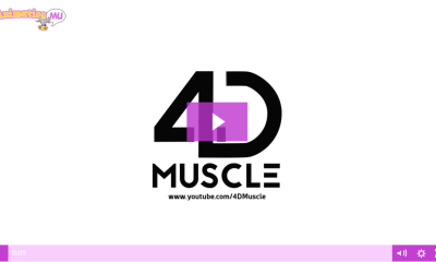 4D Muscle